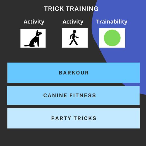Dog sport activity rating: Trick Training