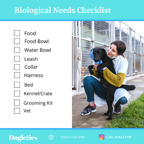 A checklist for what new puppy need