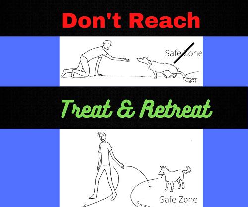 Treat & Retreat